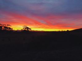 wow ANOTHER sunrise picture!
