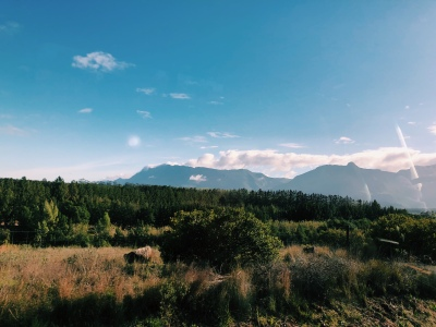 Window seat on the Garden Route drive