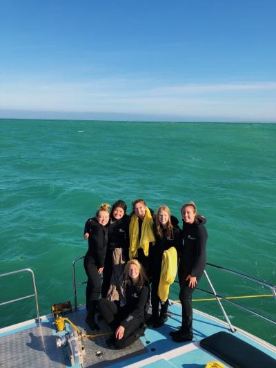 diving squad!